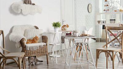 decoracion para gatos