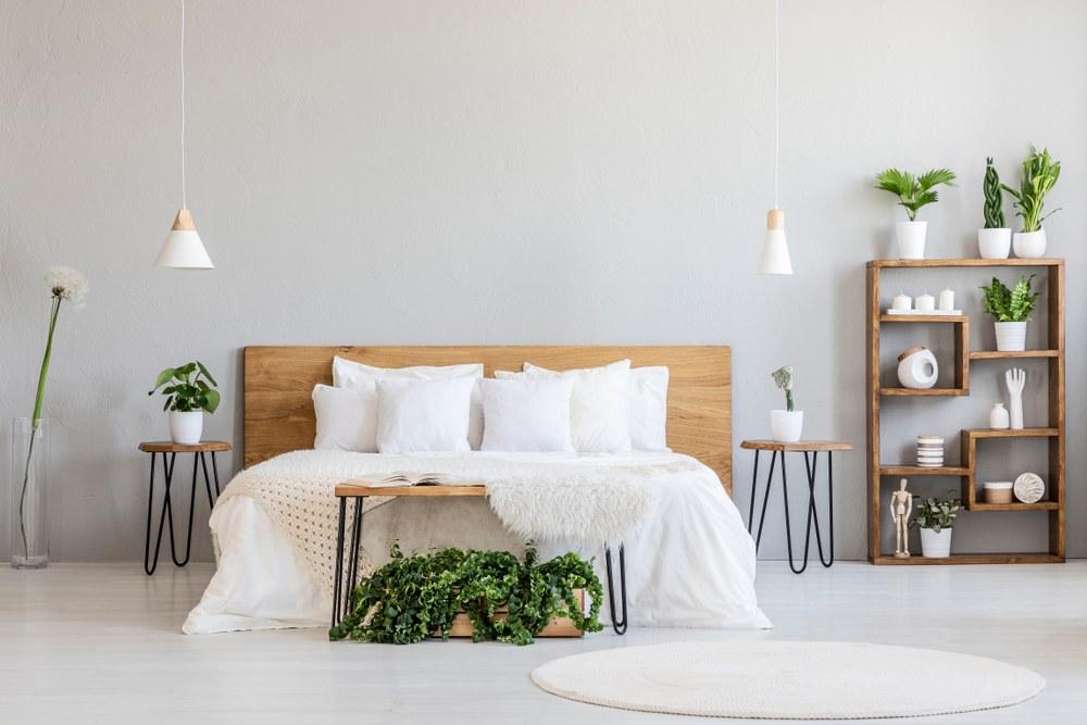 habitación plantas