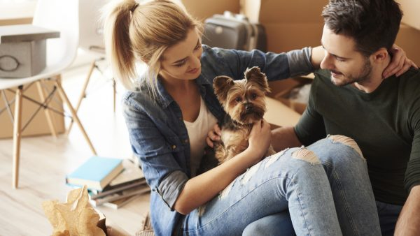 consejos para elegir vivienda si tiene mascota