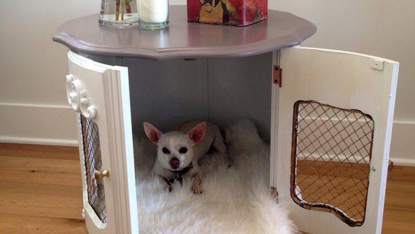 perrito en su cama de madera
