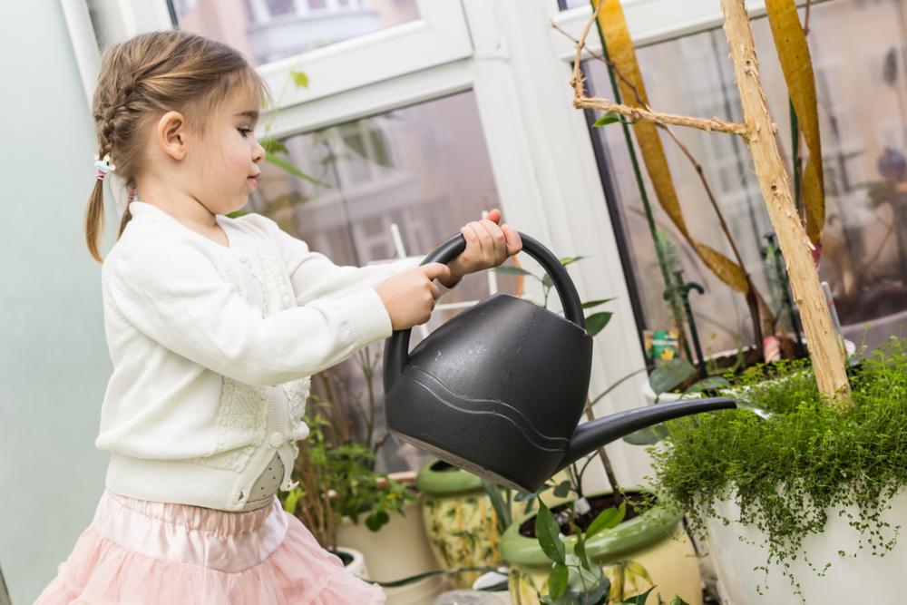 niña riega las plantas actividades para hacer en casa