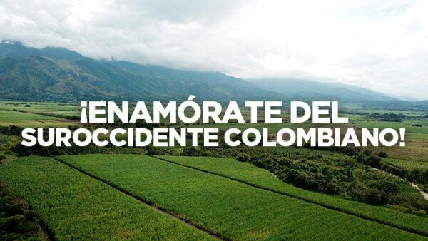 Proyectos-de-vivienda-nueva-en-el-Valle-del-Cauca